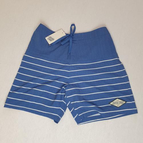 Santa Cruz Skateboards Swell Swimming / Board Shorts - Blue