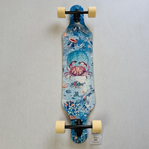 """D Street Drop Through Longboard - Reef - 37"""" - Blue"""
