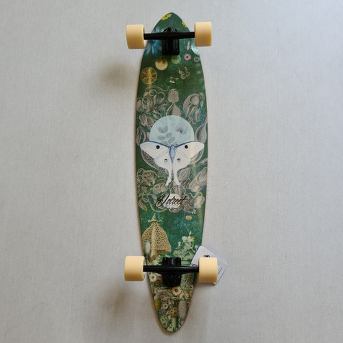 "D Street Pintail Longboard - Woodland - 40"" - Green"