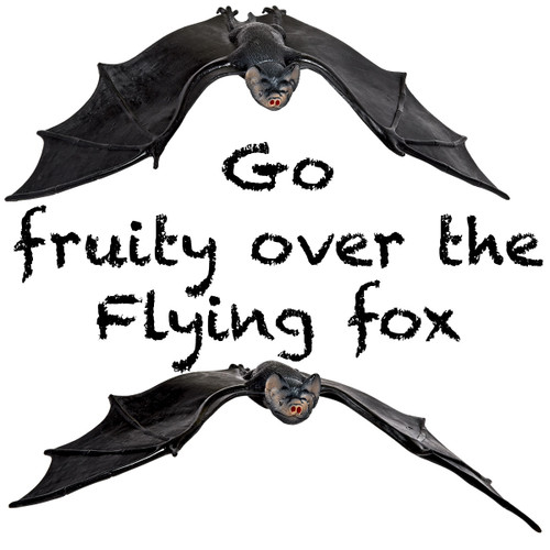 Night Time Owl And Flying Fox (Bat) Bundle of 3