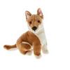Dingo Dog Plush Toy, Byron
