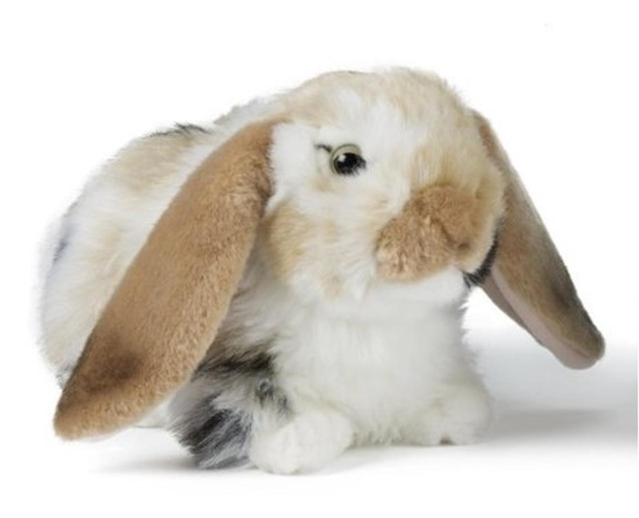 Dutch Lop Eared Rabbit Plush Toy - Living Nature