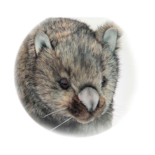 Face detail, Hansa Wombat Animal Soft Toy 28cm