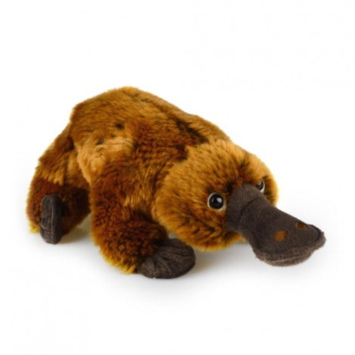 Platypus Soft Plush Toy Delux Korimco 33cm