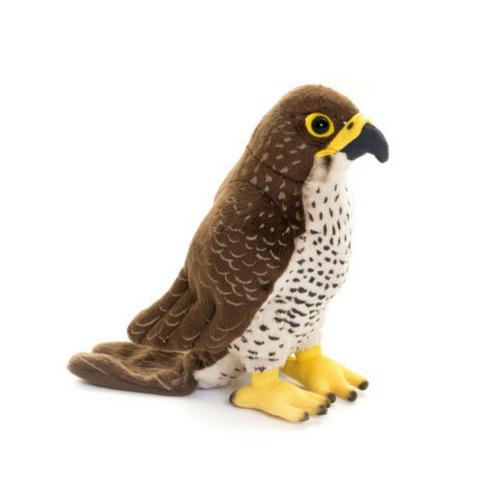 Falcon Bird Plush Toy,  Living Nature Photo