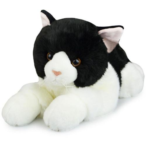 Black and White Cat, Huge Korimco Friendlee 60cm