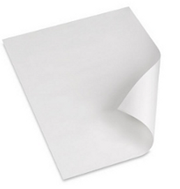 "Xerographic Mylar Film, 4 mil, 24"" X 36"" (25 sheets)"