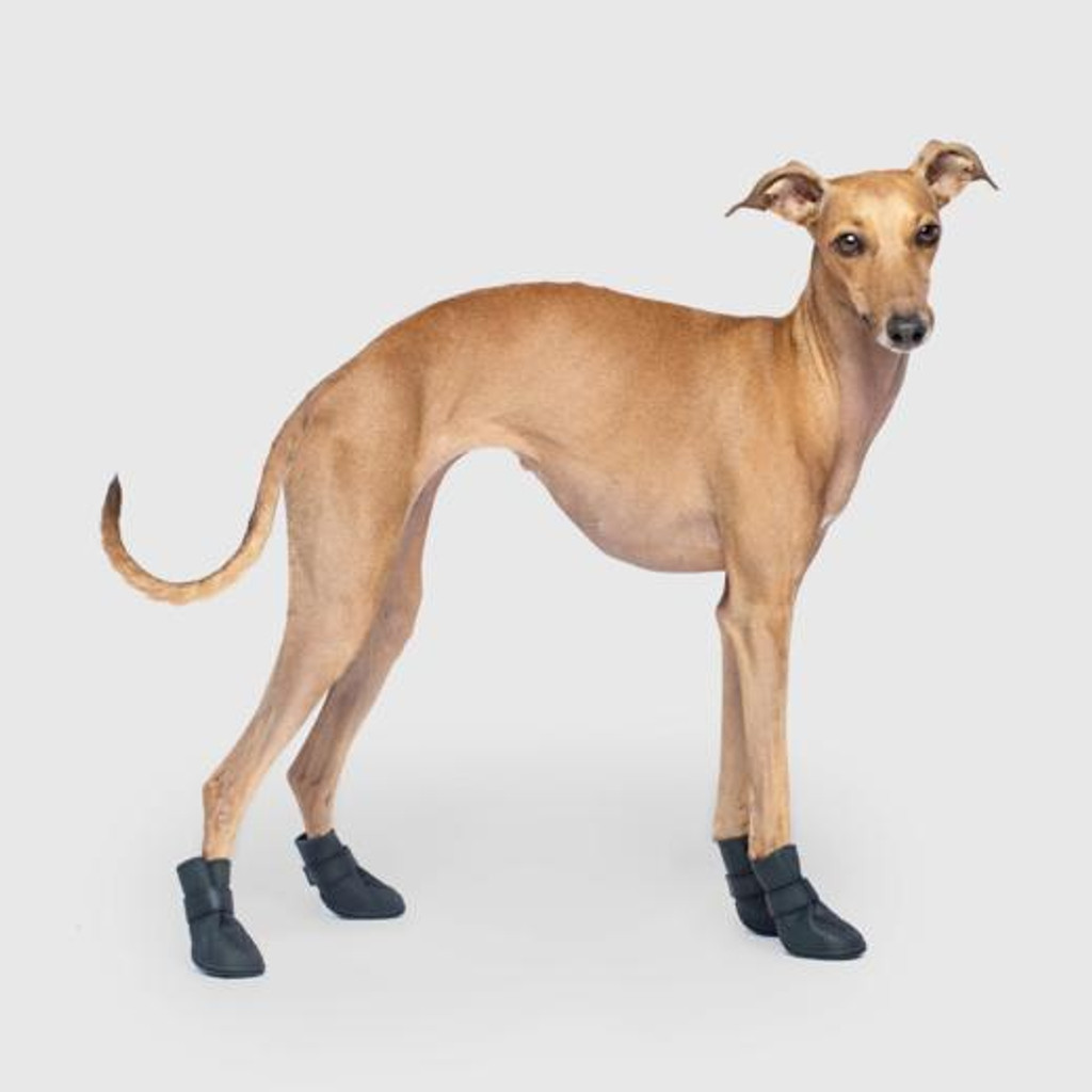 Canada Pooch Unlined Wellies