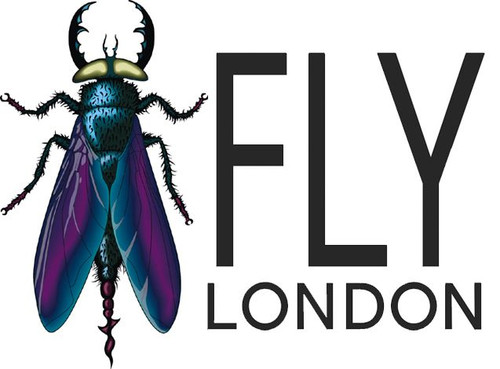 Fly London Brand Shoes & Boots