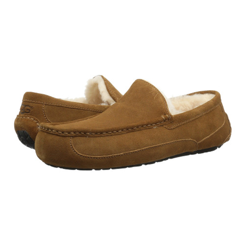 2582c91757 UGG Ascot Chestnut Mens Slippers - Shop now   Shoolu.com