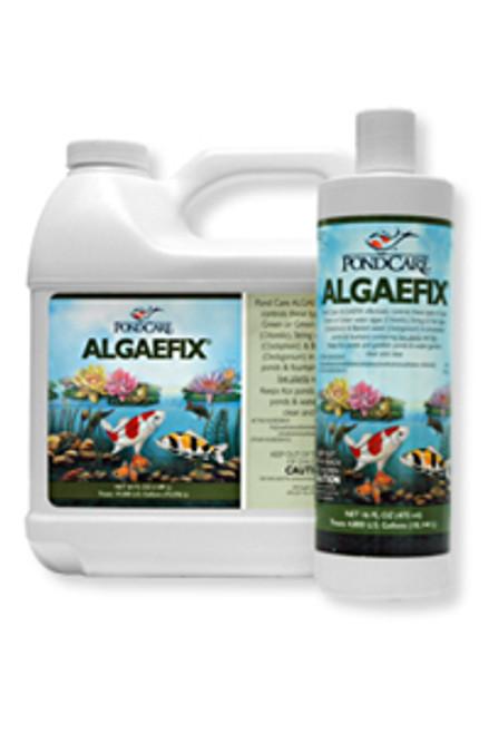 AlgaeFix