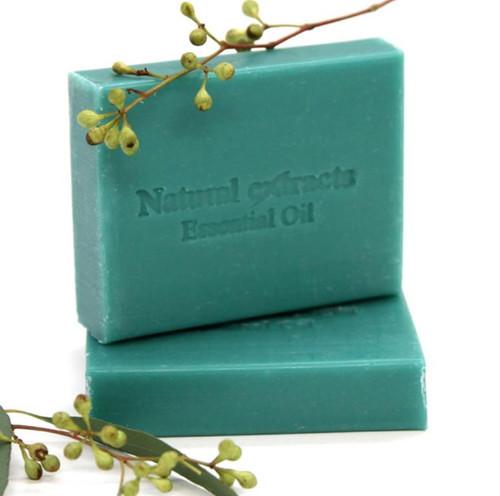 Eucalyptus Dreamtime Coconut Soap