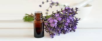 lavender-in-bottle.jpg
