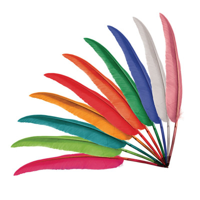 Goose Feather Quills Mixed colours - packed in 50's