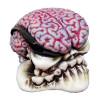 High Octane Brain Shift Knob Kit