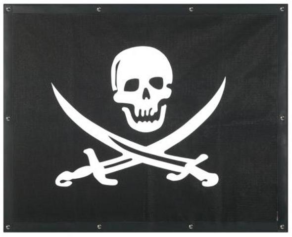 Freightliner Century Pirate Skull Bug Screen