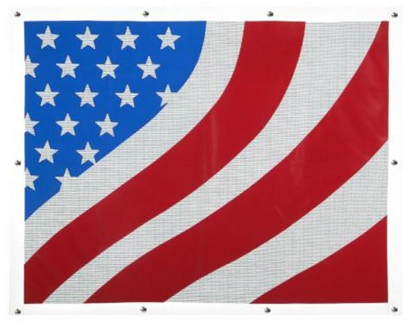 Peterbilt 377 378 379 American Flag Bug Screen