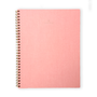 Blossom Pink Appointed Notebook. Limited Edition