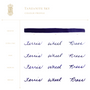 Ferris Wheel Press Fountain Pen Ink Tanzanite Sky swatch