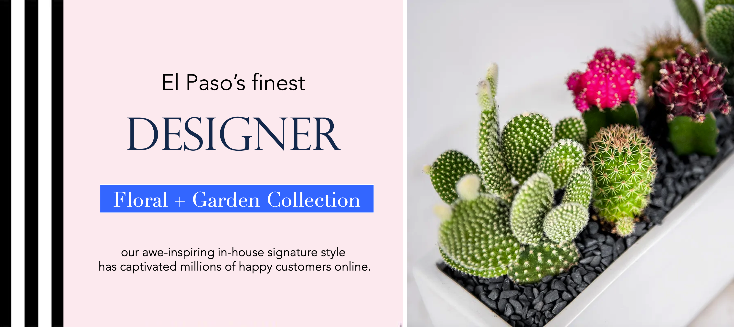 0-79912-angies-floral-designs-plants-0-1-bridal-el-paso-florist-79912-flowershop-flower-delivery-el-paso-luxury-flowers-angies-floral-el-paso-florist-79912-.png