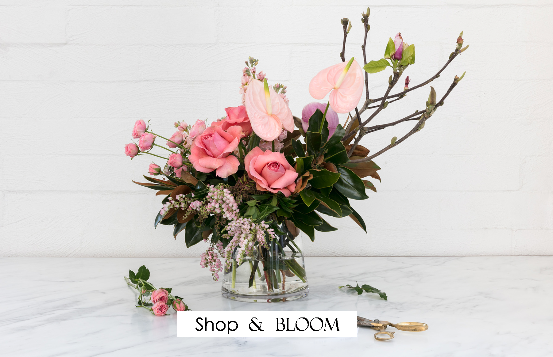 1-we-make-el-paso-bloom-with-luxury-gifts-rose-boxes-angies-floral-designs-angies-we-make-el-paso-el-paso-florist-bloom-floral-instagram-designs-rose-ladders-texas-el-paso-florist-79912-west-angies-flower.png