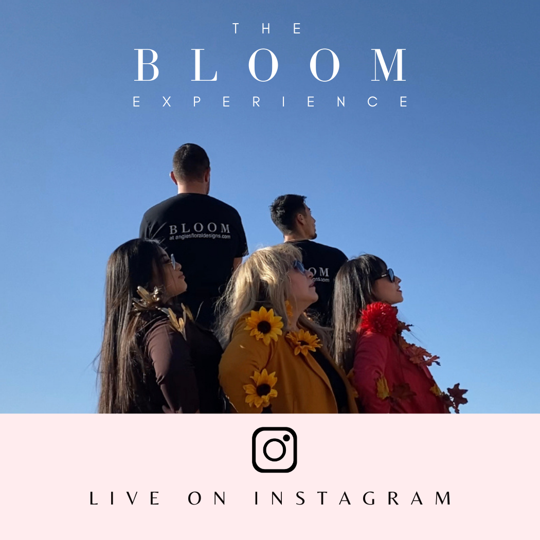 bloom-experience-live-on-instagram-angies-floral-designs-we-make-el-paso-bloom-.png