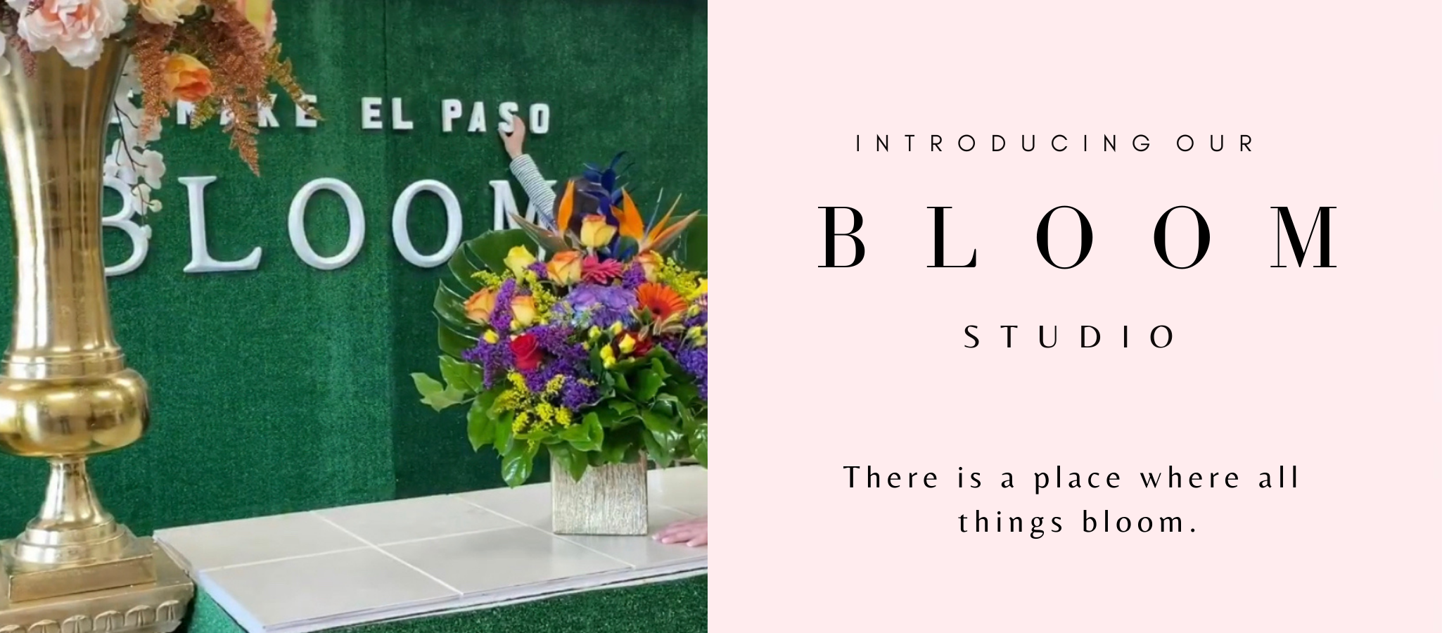 bloom-studio-angies-floral-designs-el-paso-texas-79912-.png