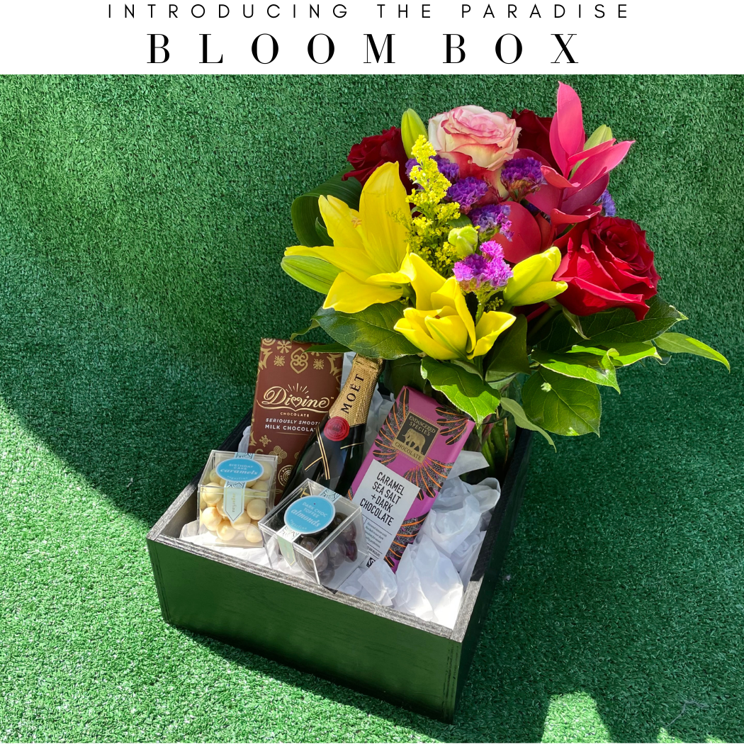 paradise-bloom-subscription-boxx-79912-angies-flower-moet-sugarfina-bloom-box-angies-floral-designs-el-paso-texas-79912.png