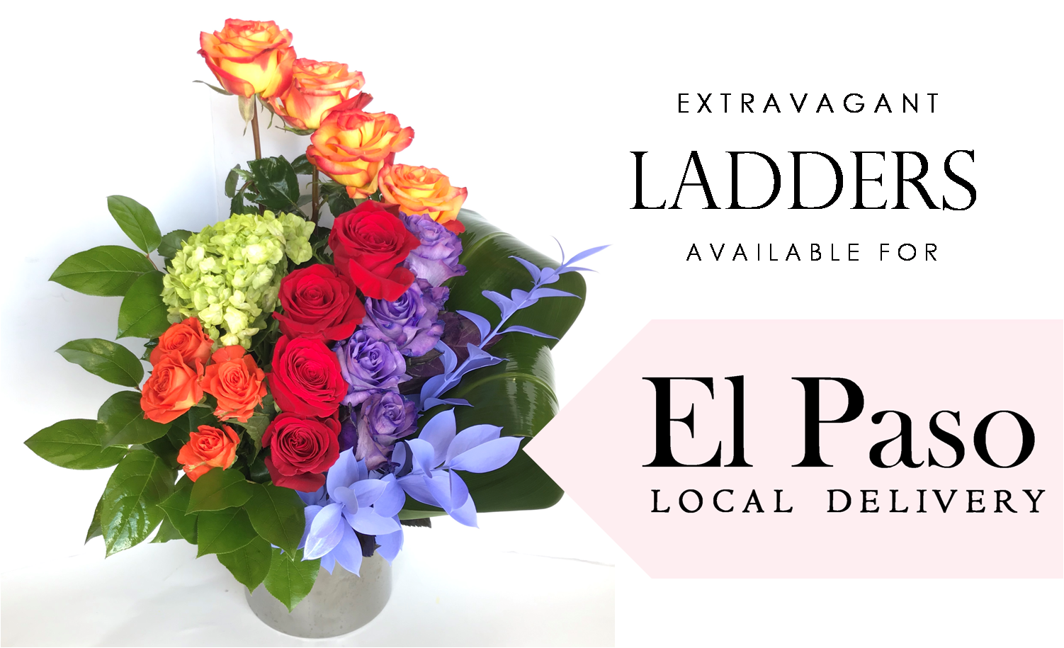 the-angies-floral-designs-el-paso-flowershop-el-paso-florist-79912-bloom-box-divine-chocolate-moet-chandon-ladders-macaroons-flower-arrangements.png