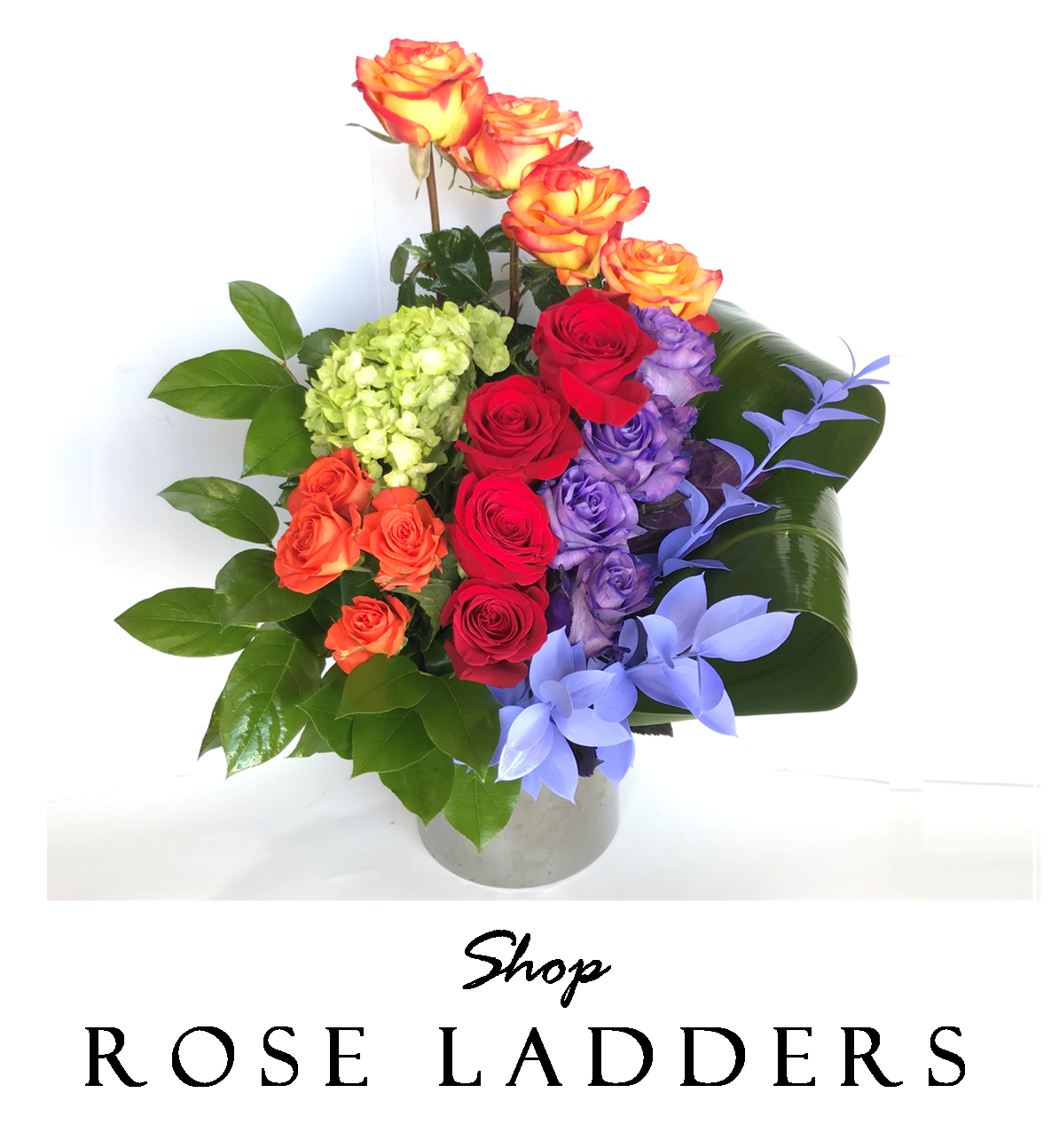 we-make-el-paso-bloom-with-luxury-gifts-rose-boxes-angies-floral-designs-angies-rose-ladders-floral-designs-rose-ladders-el-paso-florist-79912-west-angies-flower.png