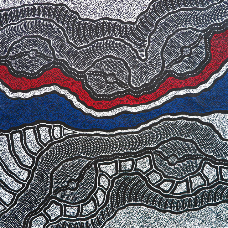 Aboriginal Artist Delvine Petyarre paints her Country.