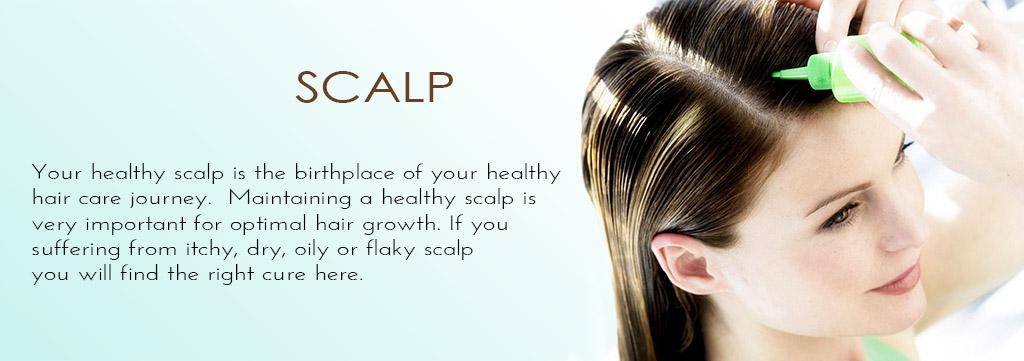 scalp-banner.jpg