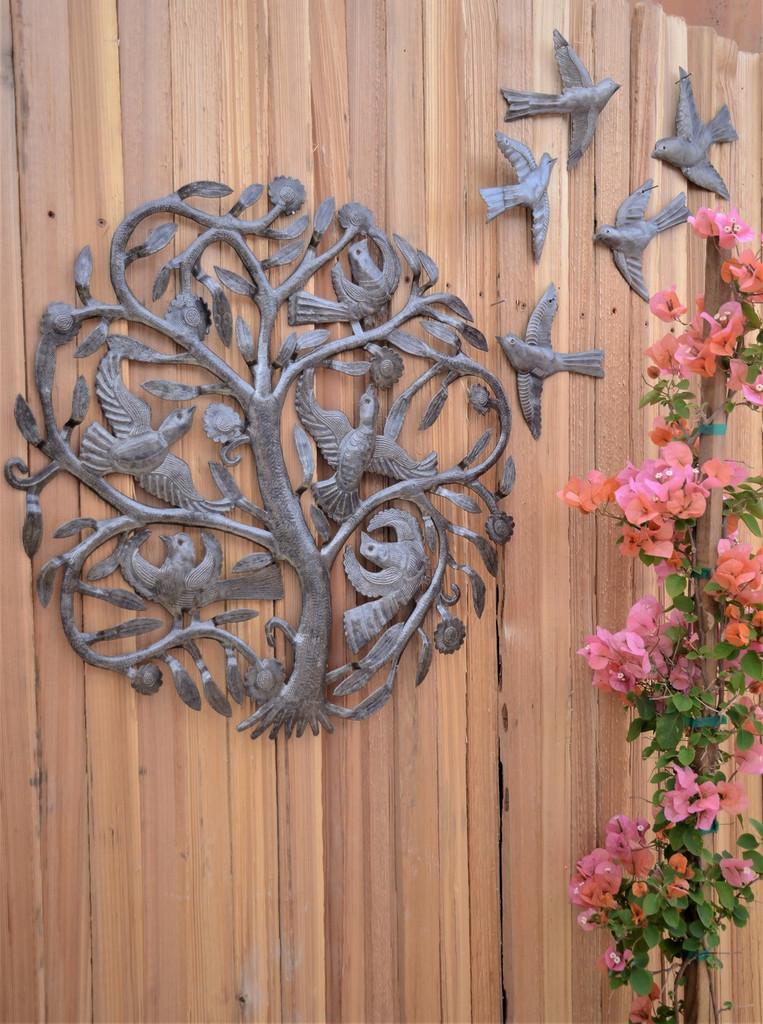 Backyard fence home decor