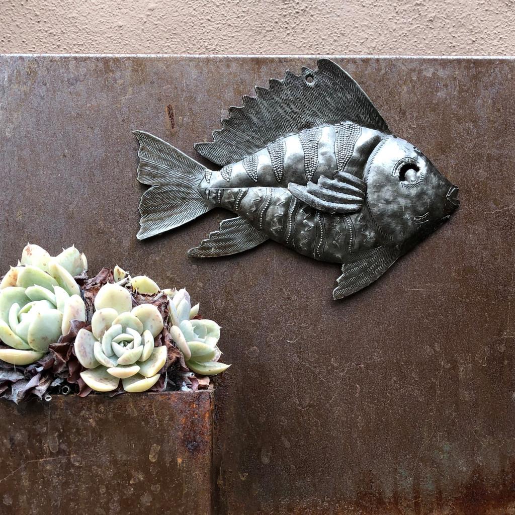 sea life theme wall art haiti