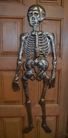 "Skeleton in your Closet  17"" X 51"""