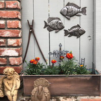 School of Fish Metal wall art Haiti