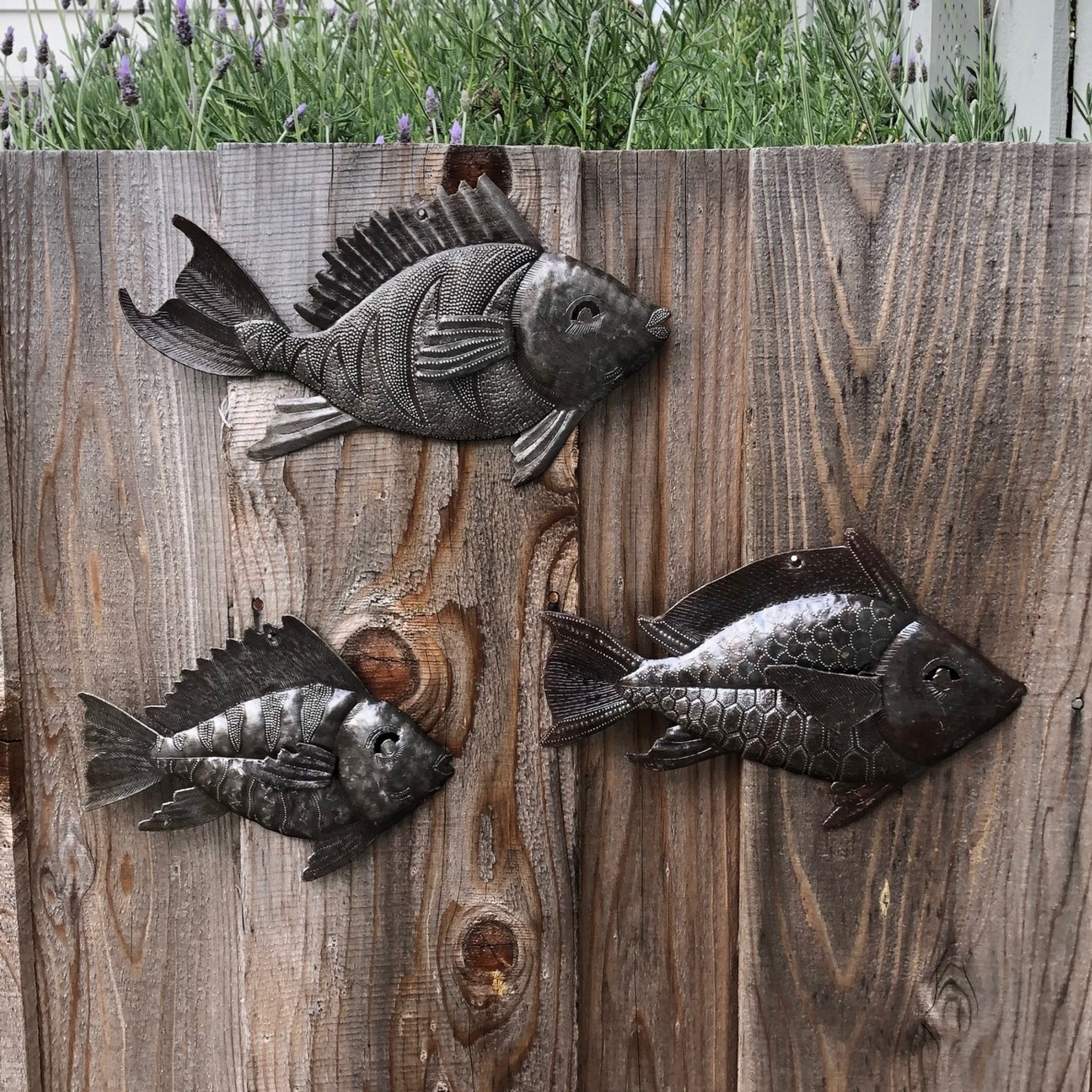 Metal Art Haiti School Of Fish Nautical Fish Set Of 3 Wall Hanging Beach Themed Home Decor Whimsical Catch Of The Day