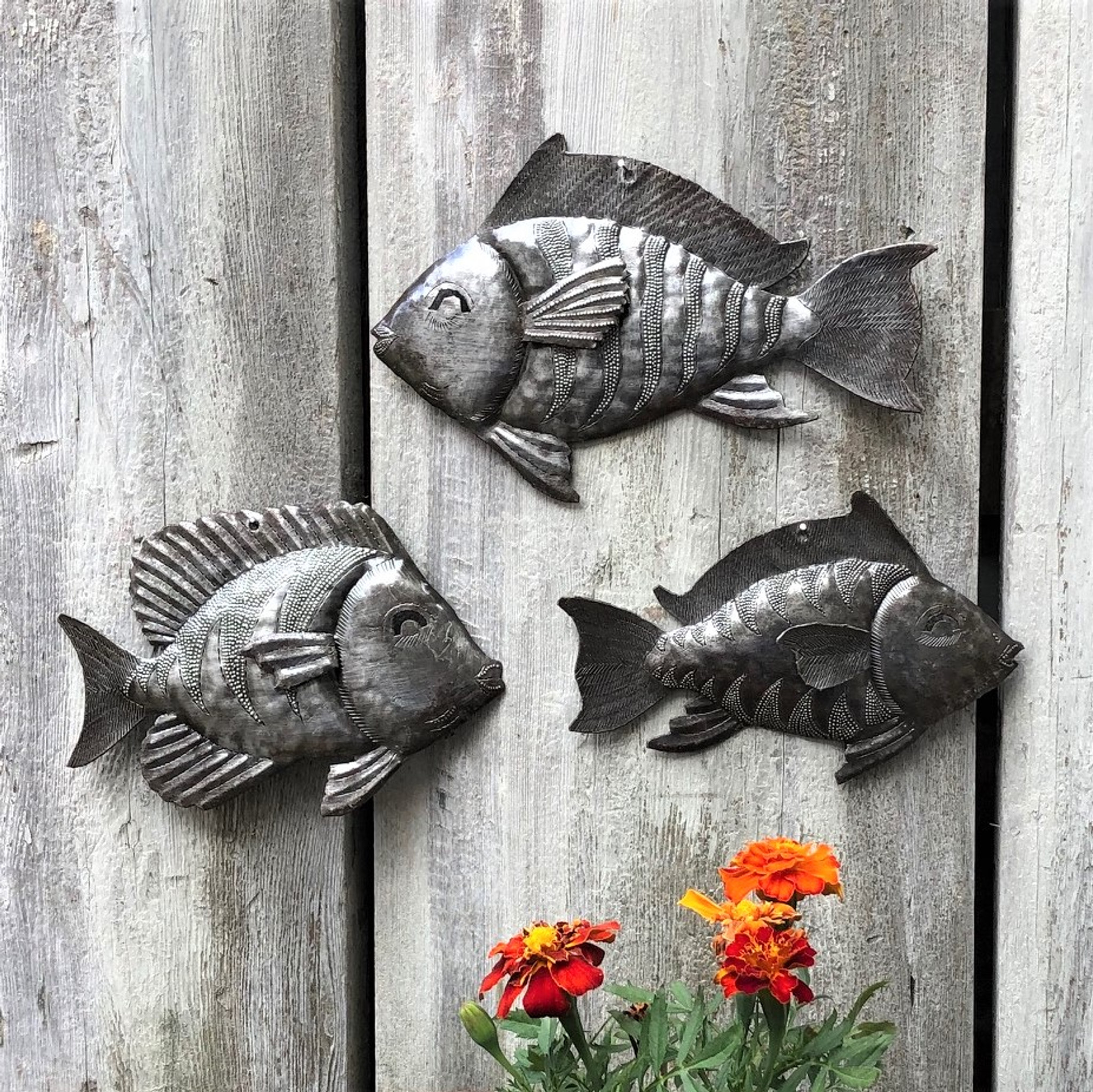 School Of Fish Nautical Theme Wall Art Set Of 3 Wall Hanging Beach Themed Home Decor Whimsical Catch Of The Day