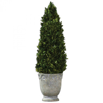 Uttermost Boxwood Cone Topiary (85 60111)