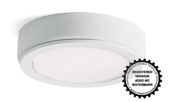 4D 12V LED Disc 3000K (10688|4D12V30WHT)