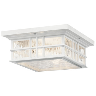 Outdoor Ceiling 2Lt (10688|49834WH)