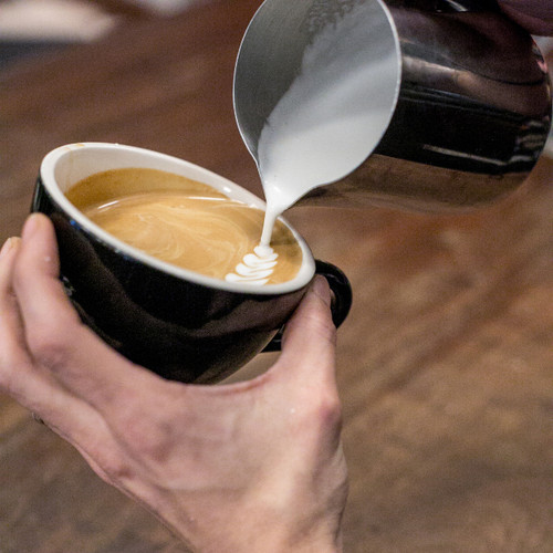 Milk Steaming/Latte Art for Beginners 3/19