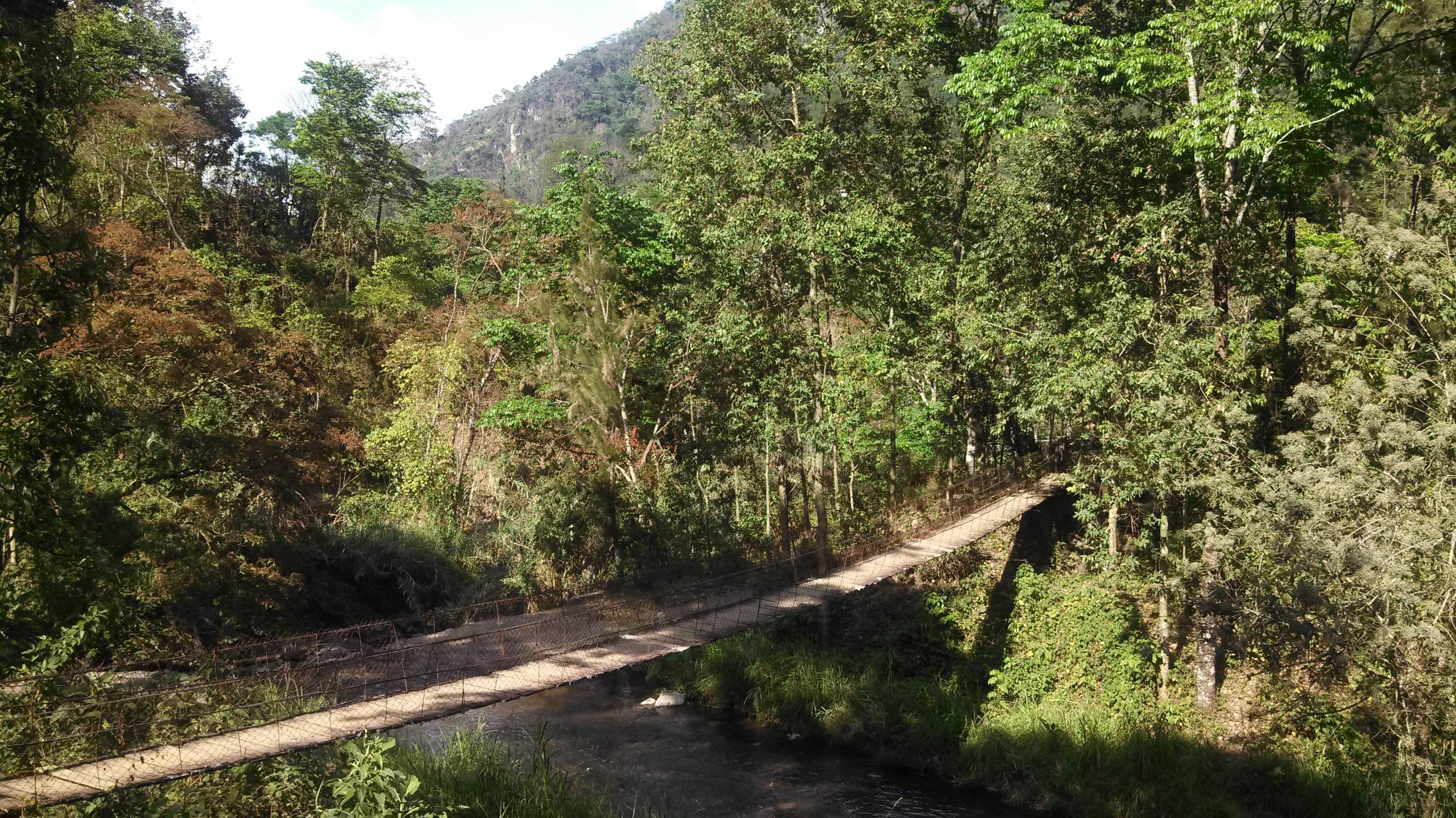 Bridge at Finca La Bolsa