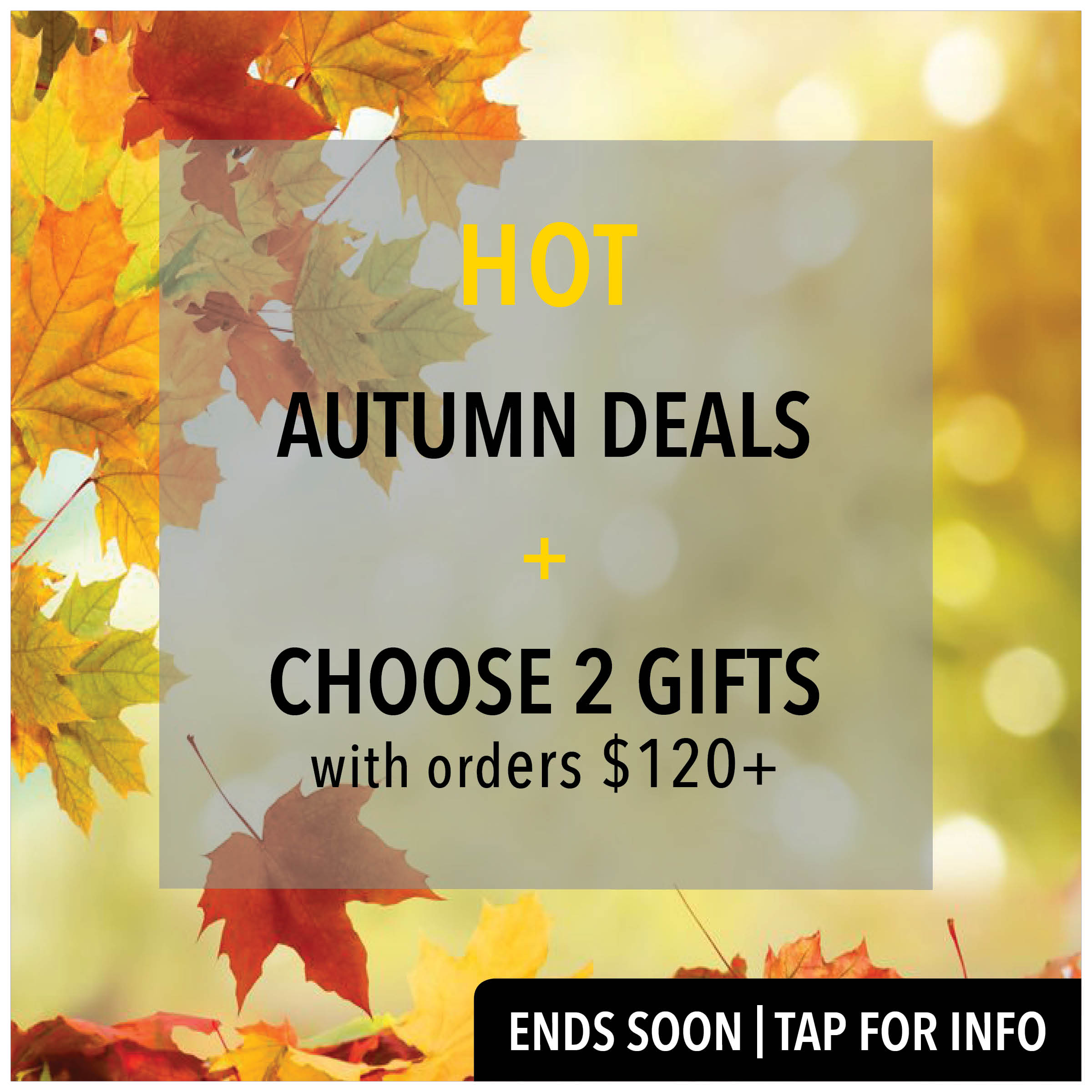 hot autumn deals + 2 free gifts*