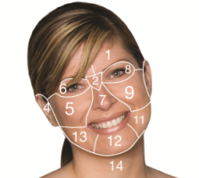 face-mapping-female-2-cropped-223-x-200.png