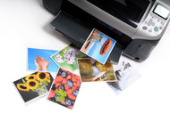 The Best Ink Cartridges for Printing Beautiful Photos