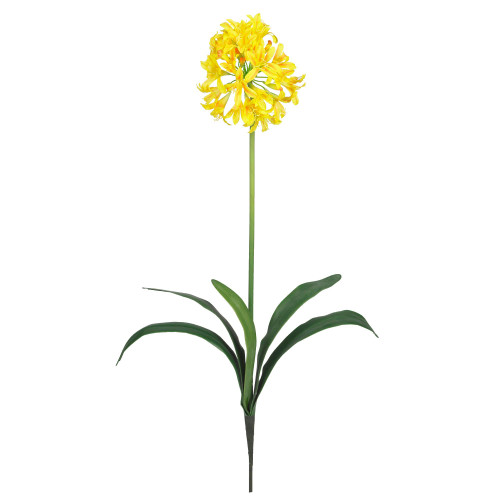 """29"""" African Lily Stem (Set of 12) - 2129-YL"""