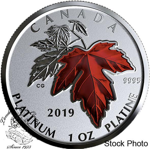 Canada: 2019 $300 Maple Leaf Forever Pure Platinum Coin