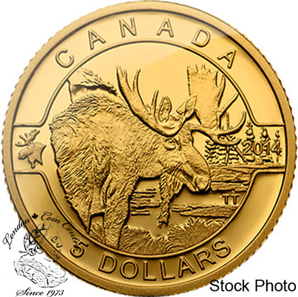Canada: 2014 $5 The Moose Pure Gold Coin