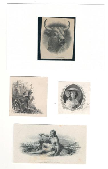 4 Various Die Proof Vignettes
